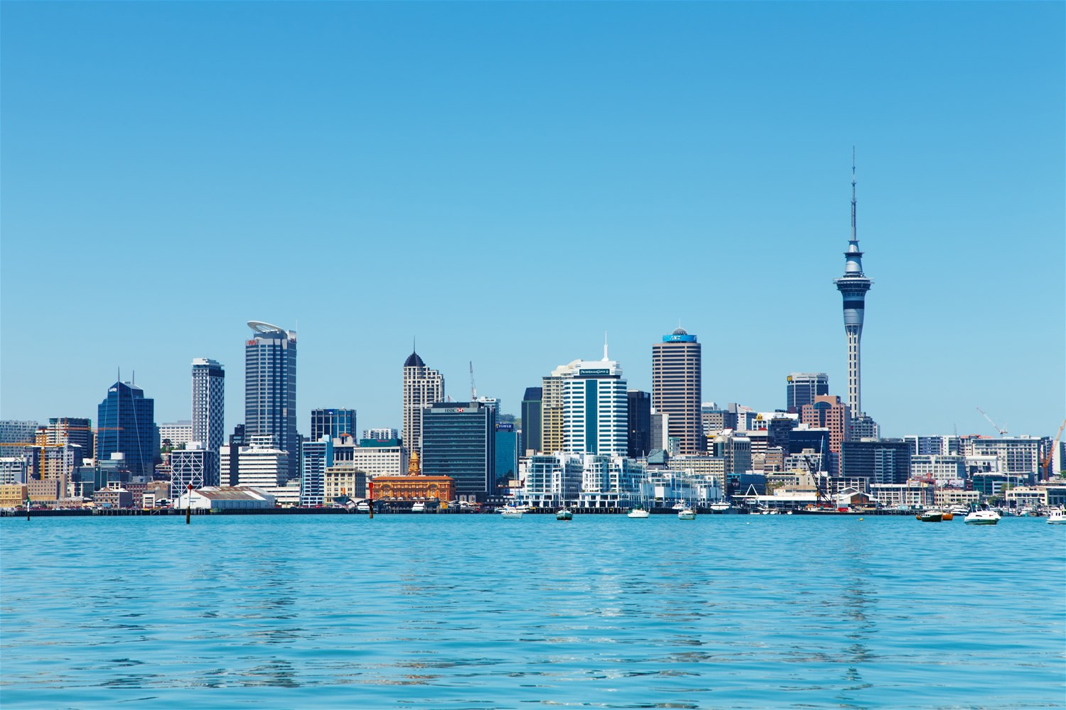 Auckland & the Coromandel Peninsula