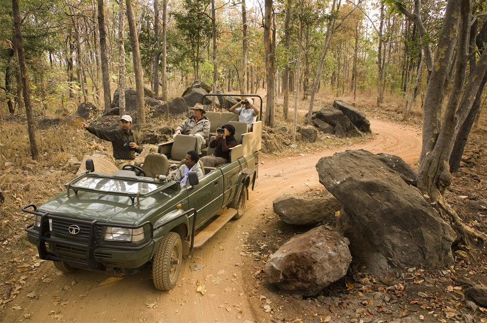 hotels in pench tiger reserve