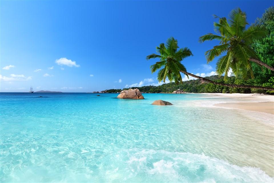 Spotlight on the Seychelles