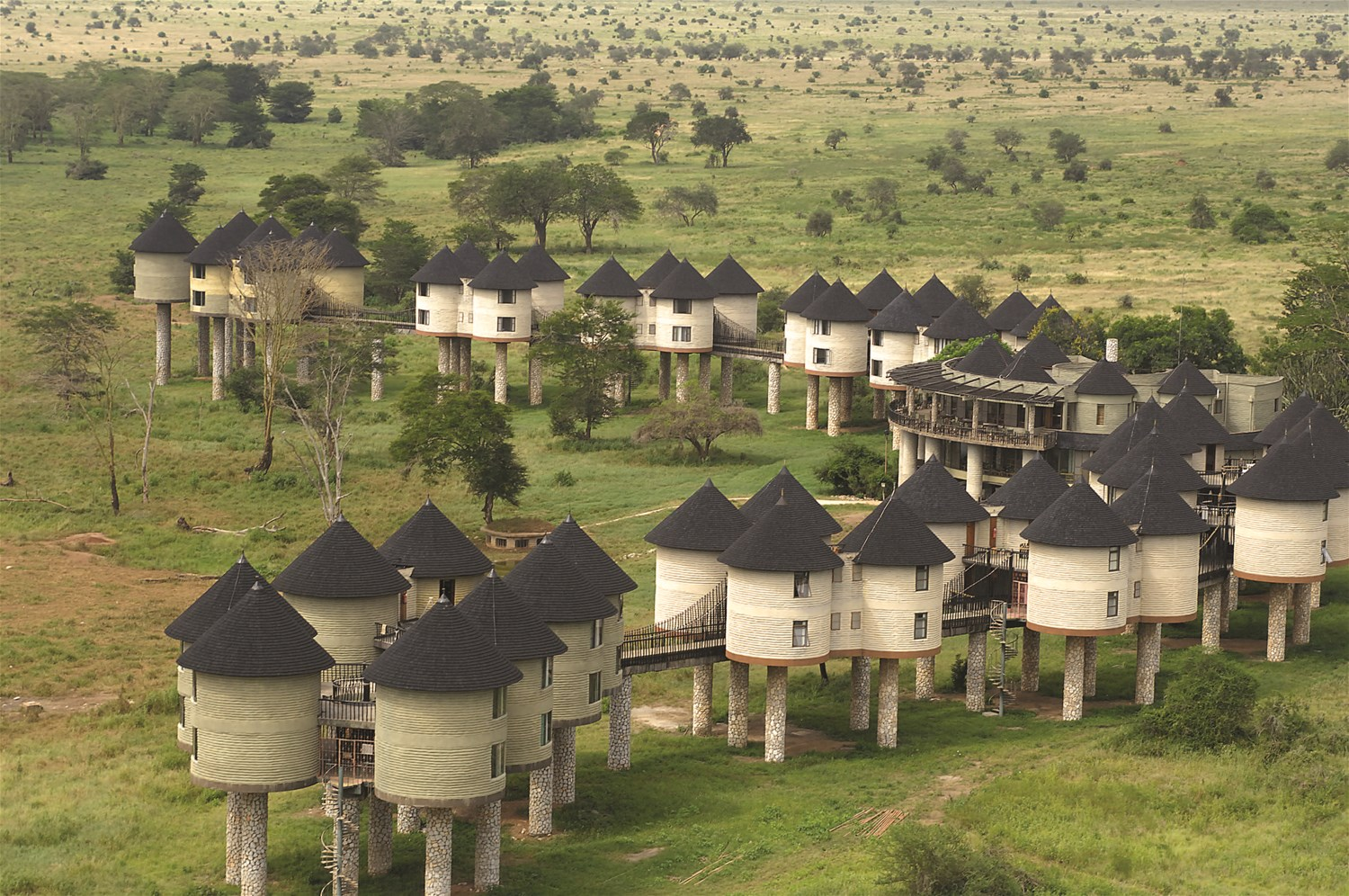 Sarova salt lick safari