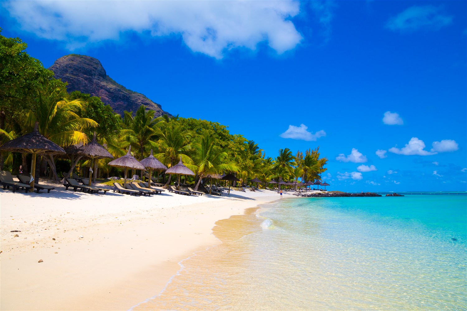 Things to do in Mauritius - From the Sea to the Sky
