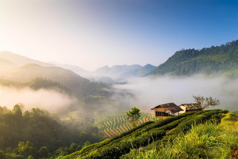Chiang Mai & the North