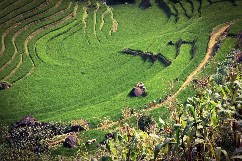 Sapa, Vietnam - Peak Perfection