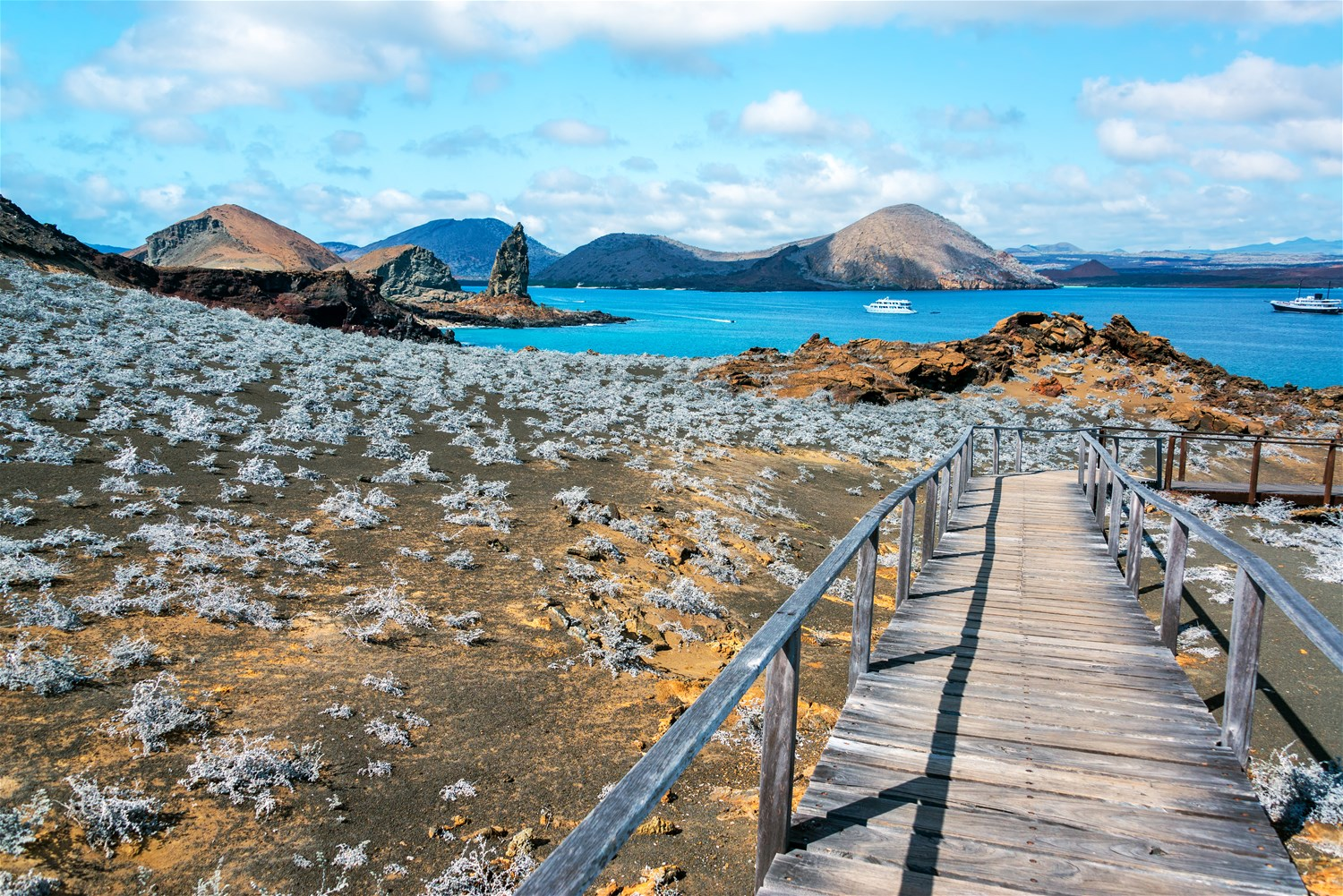 The Best Time to Visit the Galapagos Islands - Weather and Wildlife guide