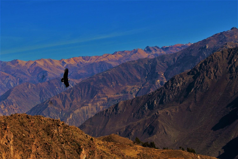 Colca Valley