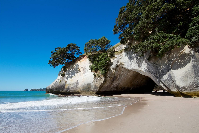 Coromandel Peninsula & Tauranga