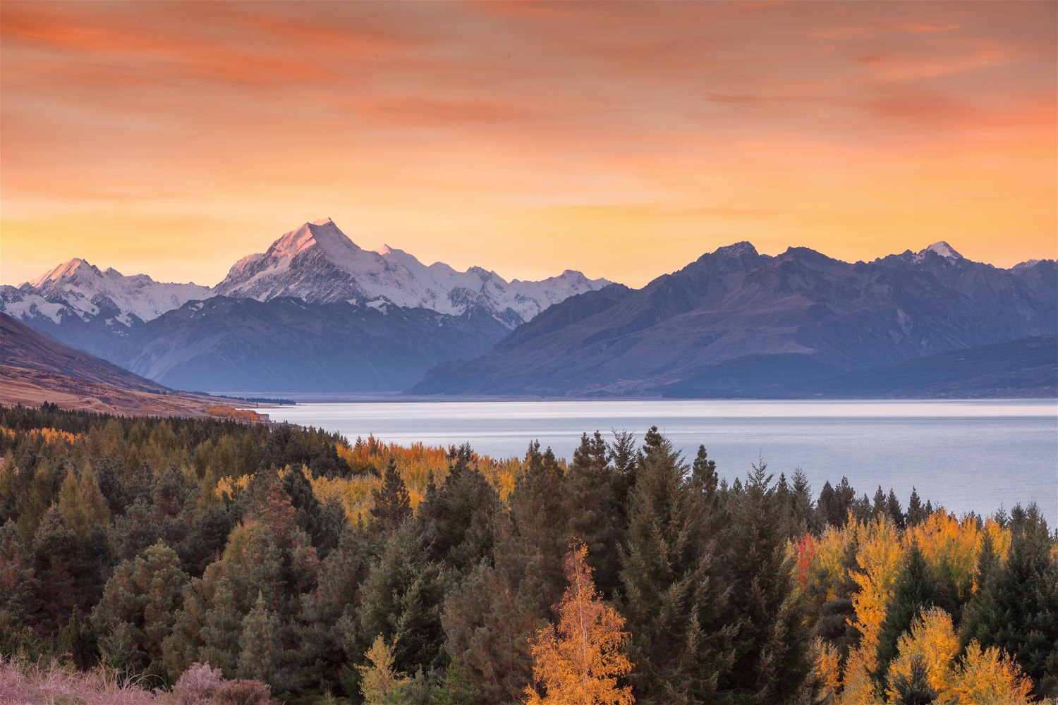 New Zealand – All Your Holidays In One Place