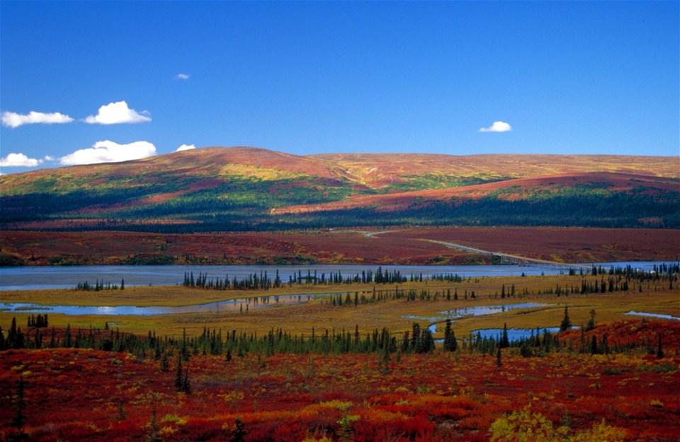 Wild Alaska - Motorhome Holiday