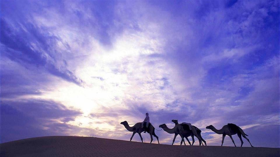 hotels in desert resorts beyond dubai