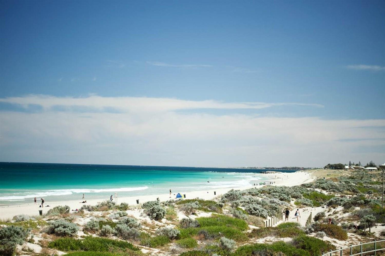 Seashells Scarborough, Perth & Beaches, Western Australia ...
