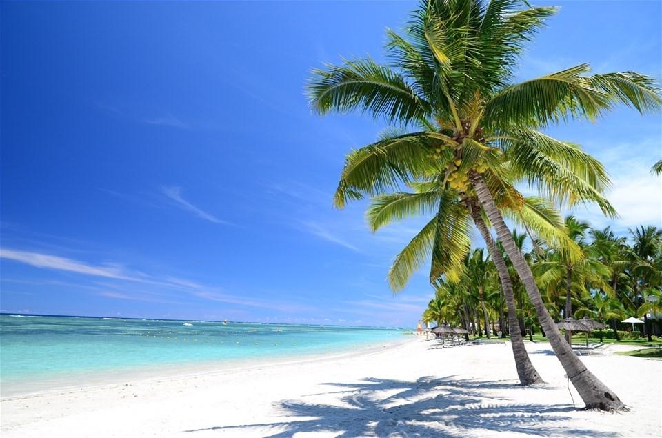 Incredible Indian Ocean