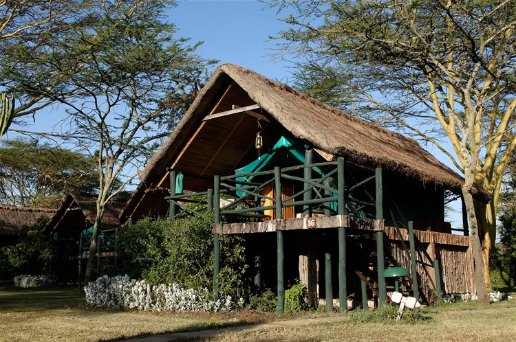 hotels in mount kenya & ol pejeta conservancy